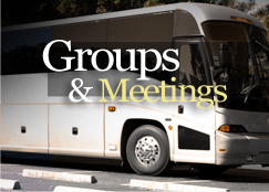 Groups & Meetings